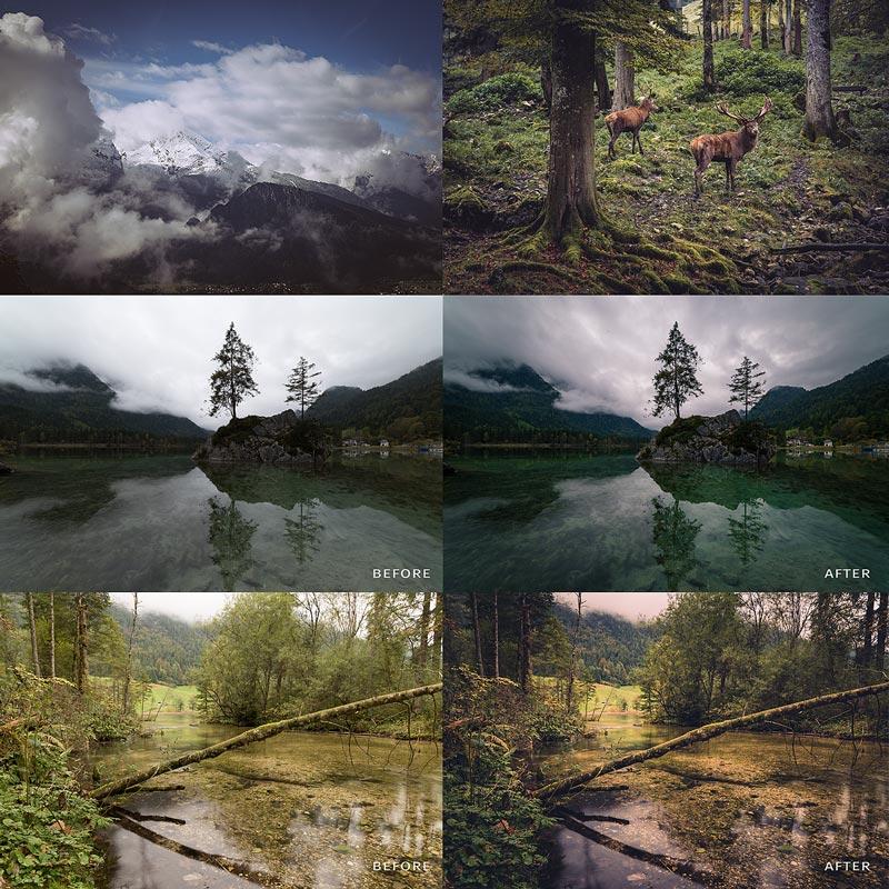 Nature moods lightroom preset photos