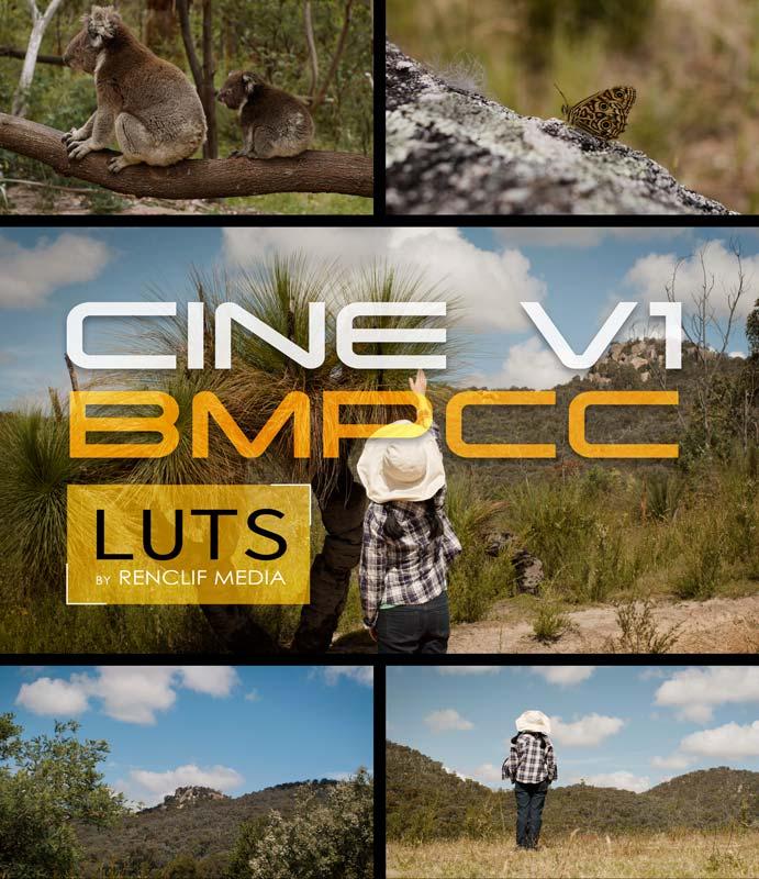 LUTs Bmpcc 4k 6k